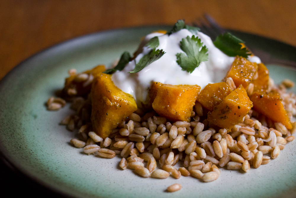 curried-butternut-squash-farro-3