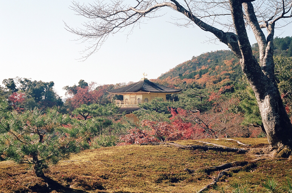 japan-72